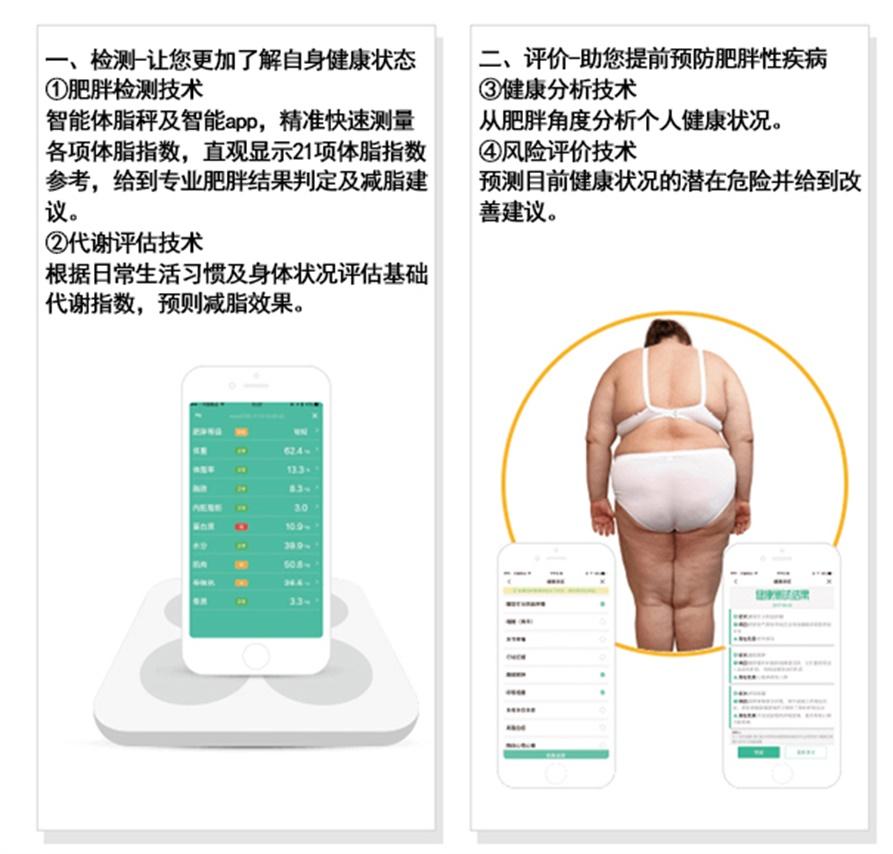 腹部瘦身减肥方法